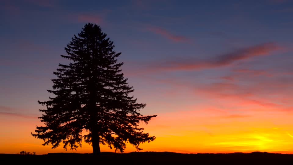 619909127-jefferson-county-pennsylvania-fir-romantic-sky-orange-color