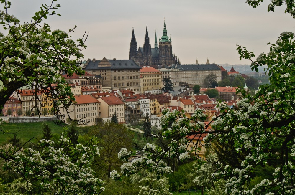 prague_czech_republic_view_trees_bloom_spring_building_88213_2560x1694